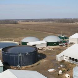 Athlone-farm
